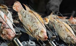 Ψήσιμο στη σχάρα των ψαριών. Στοκ εικόνες με δικαίωμα ελεύθερης χρήσης