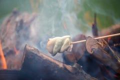 Ψήσιμο στη σχάρα marshmallows στην πυρκαγιά Στοκ Φωτογραφίες