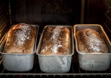 Ψήσιμο breadin του φούρνου Στοκ εικόνα με δικαίωμα ελεύθερης χρήσης