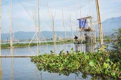 Ψαράδες στη λίμνη Rawa Pening, κεντρική Ιάβα, Ινδονησία στοκ εικόνα