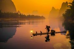 Ψαράς κορμοράνων Στοκ Εικόνα