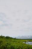 Ψαράς μυγών που αλιεύει σε έναν μακρινό από την Αλάσκα κολπίσκο Στοκ φωτογραφίες με δικαίωμα ελεύθερης χρήσης