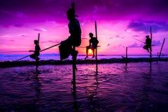 Ψαράς ξυλοποδάρων σε Koggala, Σρι Λάνκα Στοκ Φωτογραφίες