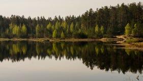 Ψαράς σε μια βάρκα στη λίμνη στα ξύλα στοκ εικόνες