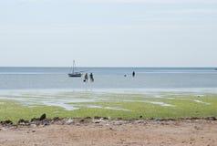 Ψαράδες στη θάλασσα Στοκ εικόνα με δικαίωμα ελεύθερης χρήσης
