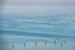 Ψαροχώρι στο νησί καβουριών, selangor Μαλαισία Στοκ εικόνα με δικαίωμα ελεύθερης χρήσης