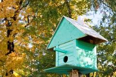 Ψαρόνι-σπίτι στοκ φωτογραφίες με δικαίωμα ελεύθερης χρήσης