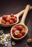 ψαλίδισμα της απομονωμένης φράουλας κουταλιών μονοπατιών whtie ξύλινης Στοκ Φωτογραφία