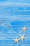 ψαλιδίζοντας απομονωμένο λευκό κοχυλιών θάλασσας μονοπατιών στοκ εικόνες