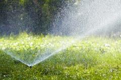 Ψεκάζοντας νερό ψεκαστήρων νερού χορτοταπήτων πέρα από τη χλόη στον κήπο μια καυτή θερινή ημέρα Αυτόματοι χορτοτάπητες ποτίσματος Στοκ εικόνα με δικαίωμα ελεύθερης χρήσης