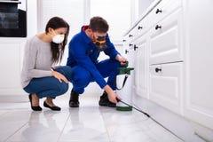Ψεκάζοντας φυτοφάρμακο εργαζομένων ελέγχου παρασίτων στο ξύλινο γραφείο στοκ εικόνες