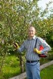 Ψεκάζοντας φυτό δέντρων ατόμων Στοκ εικόνα με δικαίωμα ελεύθερης χρήσης