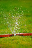 ψεκάζοντας ύδωρ Στοκ Φωτογραφίες