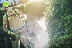 Ψεκασμός εγκαταστάσεων φυτοφαρμάκων Στοκ Εικόνα