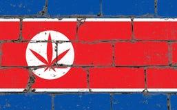 Ψεκασμός τέχνης οδών γκράφιτι που επισύρει την προσοχή στο διάτρητο Φύλλο καννάβεων στο τουβλότοιχο με τη σημαία DPRK στοκ φωτογραφία