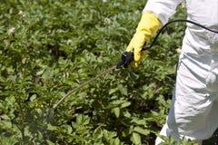 Ψεκασμός φυτοφαρμάκων Στοκ Εικόνες