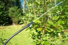Ψεκαστήρας φυτοφαρμάκων στο δέντρο μηλιάς Στοκ Φωτογραφία