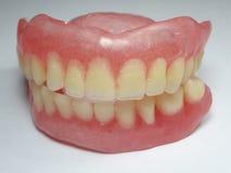 ψεύτικα δόντια Στοκ εικόνες με δικαίωμα ελεύθερης χρήσης