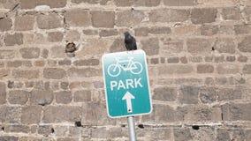 Ψεύτικος χώρος στάθμευσης, χώρος στάθμευσης ποδηλάτων Στοκ Εικόνα