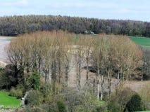 Ψηλά δέντρα στην κοιλάδα σκακιού, Chorleywood, Hertfordshire στοκ εικόνες