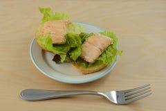 Ψημένα ανοικτά αντιμέτωπα μίνι σάντουιτς λωρίδων ψαριών σολομών Στοκ Εικόνα