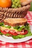 Ψημένα ζαμπόν πικ-νίκ καλάθι και σάντουιτς τυριών Στοκ εικόνα με δικαίωμα ελεύθερης χρήσης