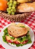 Ψημένα ζαμπόν πικ-νίκ καλάθι και σάντουιτς τυριών Στοκ εικόνες με δικαίωμα ελεύθερης χρήσης