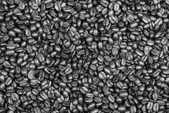 Ψημένα μέσο Arabica φασόλια καφέ Στοκ Εικόνα