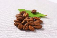 Ψημένα μέσο Arabica φασόλια καφέ Στοκ Φωτογραφία