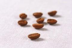 Ψημένα μέσο Arabica φασόλια καφέ Στοκ Εικόνες