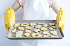 ψημένα μπισκότα πρόσφατα Στοκ Φωτογραφίες