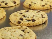 ψημένα μπισκότα φρέσκα Στοκ Εικόνες