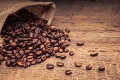 Ψημένα πρόστιμο φασόλια καφέ Στοκ Εικόνες