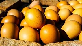 Ψημένα στη σχάρα αυγά στην τοπική αγορά Στοκ φωτογραφίες με δικαίωμα ελεύθερης χρήσης