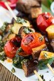 Ψημένα στη σχάρα λαχανικά και βόειο κρέας shishkabobs Στοκ εικόνες με δικαίωμα ελεύθερης χρήσης