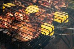 Ψημένα στη σχάρα κομμάτια κοτόπουλου με το καλαμπόκι, θερινό πικ-νίκ στοκ φωτογραφία με δικαίωμα ελεύθερης χρήσης