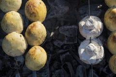 Ψημένα στη σχάρα κρέας και μανιτάρια Στοκ εικόνες με δικαίωμα ελεύθερης χρήσης