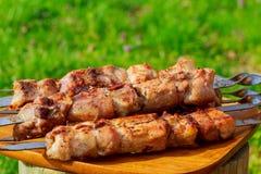 Ψημένα στη σχάρα κρέατα, καυτά κομμάτια σε ένα πιάτο αργίλου, εκλεκτική εστίαση Στοκ φωτογραφίες με δικαίωμα ελεύθερης χρήσης