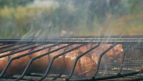 Ψημένα στη σχάρα λουκάνικα bbq Ποικιλία ` αρχική Νυρεμβέργη Rostbratwurst ` απόθεμα βίντεο