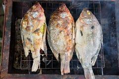 Ψημένα στη σχάρα ψάρια με την αλατισμένη κρούστα και χορτάρι στη σχάρα στοκ φωτογραφία