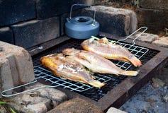 Ψημένα στη σχάρα ψάρια με το πλέγμα Στοκ φωτογραφίες με δικαίωμα ελεύθερης χρήσης