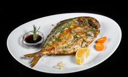 Ψημένα στη σχάρα ψάρια dorado με τα πράσινα και λεμόνι στο μαύρο υπόβαθρο που απομονώνεται στοκ φωτογραφίες με δικαίωμα ελεύθερης χρήσης