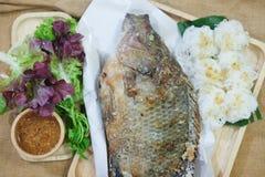Ψημένα στη σχάρα Tilapia ψάρια με το αλάτι των ταϊλανδικών τροφίμων στοκ εικόνες