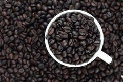 Ψημένα φασόλια καφέ στο άσπρο γυαλί στοκ εικόνες με δικαίωμα ελεύθερης χρήσης