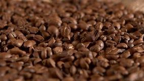 Ψημένα φασόλια καφέ και να αφορήσει burlap την απόλυση απόθεμα βίντεο