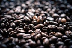 Ψημένα φασόλια καφέ Στοκ Φωτογραφίες