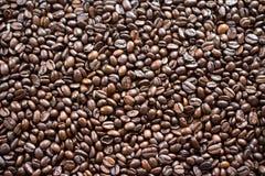 Ψημένα φασόλια καφέ Στοκ Εικόνα