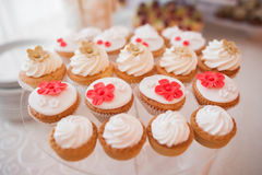 Ψημένα χαριτωμένα cupcakes Στοκ Εικόνες
