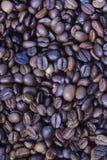Ψημένα arabica φασόλια καφέ Στοκ Φωτογραφία