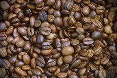 Ψημένα arabica φασόλια καφέ Στοκ φωτογραφίες με δικαίωμα ελεύθερης χρήσης